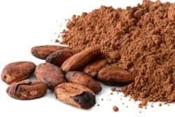 Rauwe cacaobonen en poeder